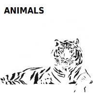 動物。恐龍。植物